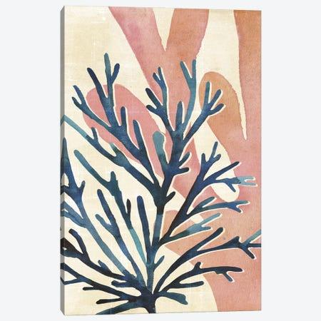 Chromatic Sea Tangle I Canvas Print #AWR134} by Annie Warren Canvas Print