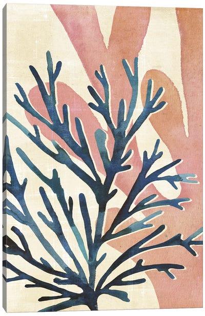 Chromatic Sea Tangle I Canvas Art Print