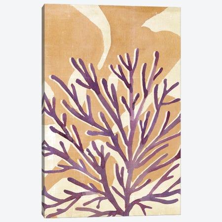Chromatic Sea Tangle II Canvas Print #AWR135} by Annie Warren Canvas Print