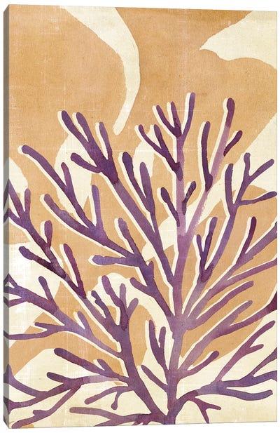Chromatic Sea Tangle II Canvas Art Print