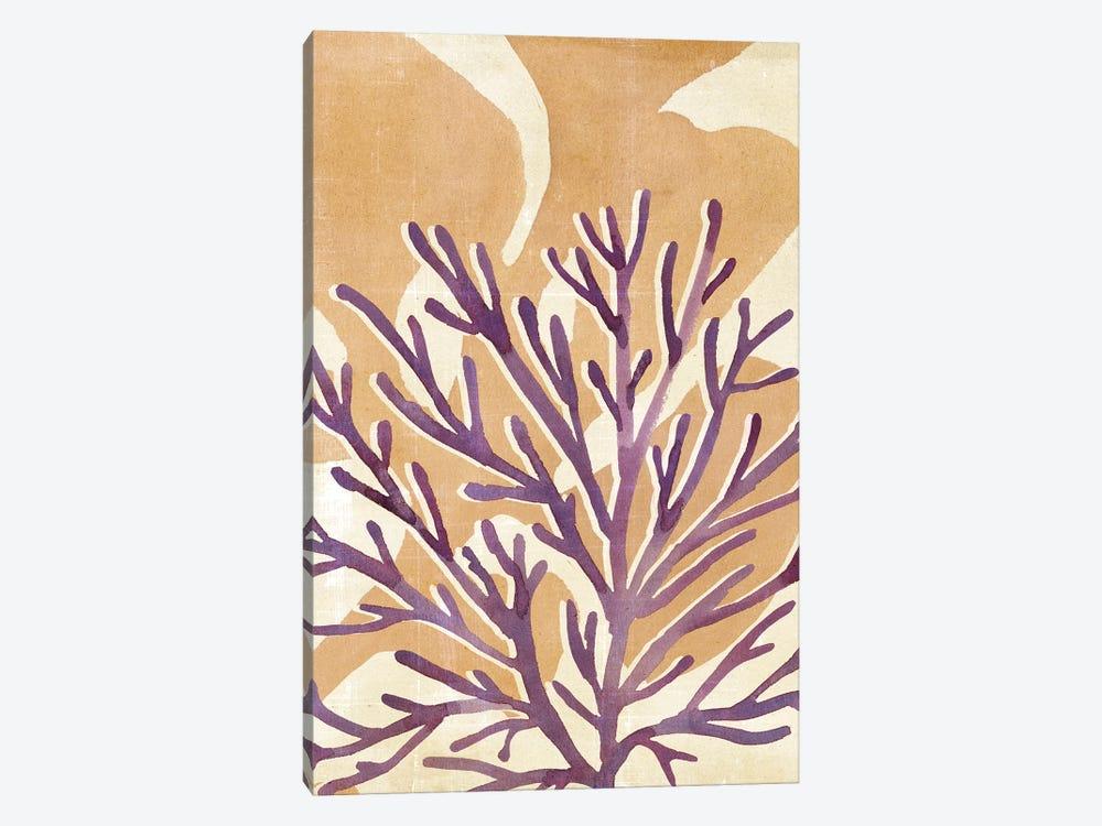 Chromatic Sea Tangle II by Annie Warren 1-piece Canvas Print