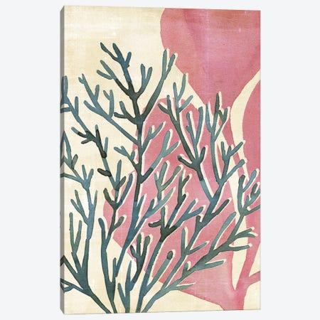 Chromatic Sea Tangle III Canvas Print #AWR136} by Annie Warren Canvas Art Print