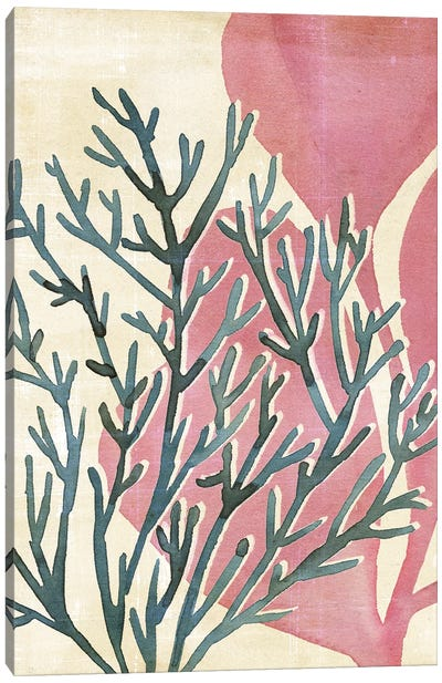 Chromatic Sea Tangle III Canvas Art Print