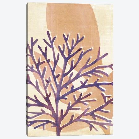 Chromatic Sea Tangle IV Canvas Print #AWR137} by Annie Warren Art Print
