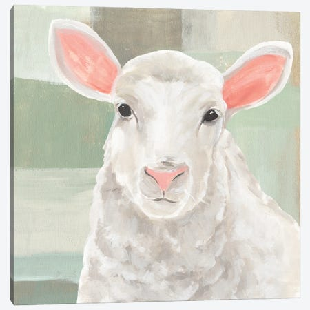 Cotton Ball II Canvas Print #AWR139} by Annie Warren Canvas Artwork