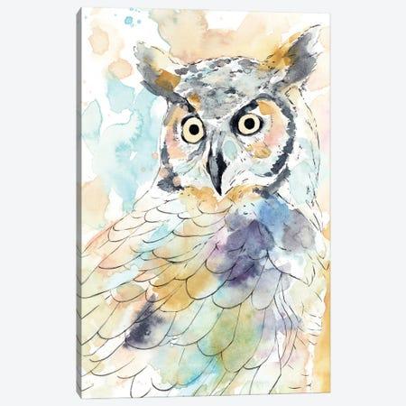 Owl Majestic II Canvas Print #AWR147} by Annie Warren Canvas Art