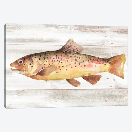 Spotted Trout I Canvas Print #AWR148} by Annie Warren Canvas Print