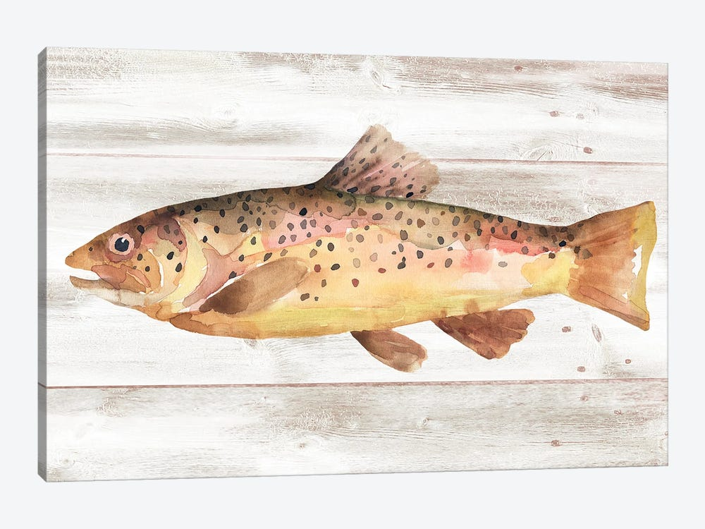 Spotted Trout I by Annie Warren 1-piece Canvas Print
