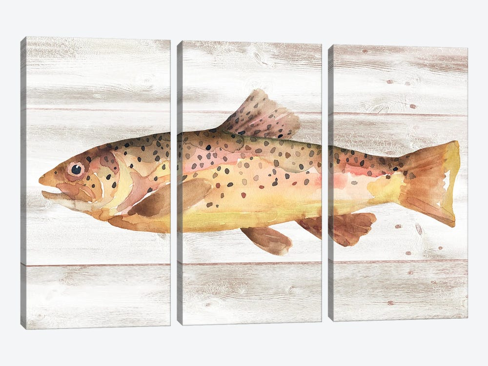 Spotted Trout I by Annie Warren 3-piece Art Print
