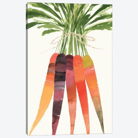 Vibrant Bunch II Canvas Print #AWR151} by Annie Warren Canvas Art