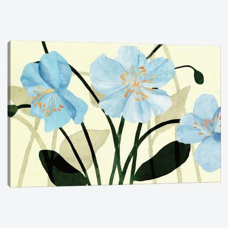 Blue Poppies I Canvas Print #AWR156} by Annie Warren Canvas Art Print