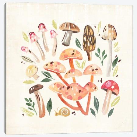 Fungi Field Trip I Canvas Print #AWR172} by Annie Warren Canvas Artwork