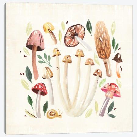 Fungi Field Trip II Canvas Print #AWR173} by Annie Warren Canvas Wall Art