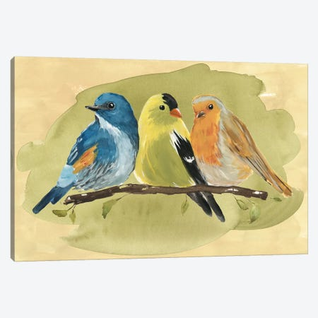 Bird Perch I Canvas Print #AWR1} by Annie Warren Canvas Wall Art