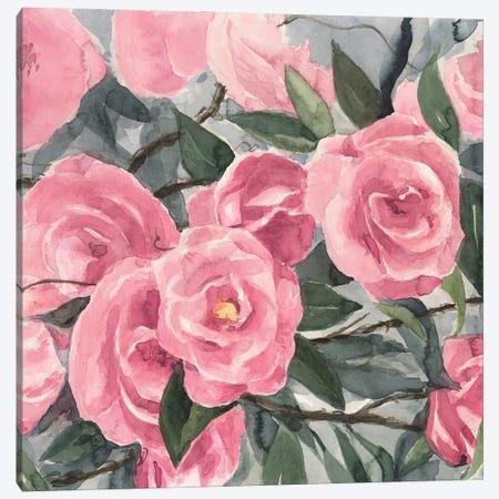 Watercolor Roses II Canvas Print #AWR206} by Annie Warren Art Print