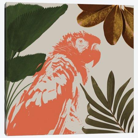 Graphic Tropical Bird I Canvas Print #AWR222} by Annie Warren Canvas Art
