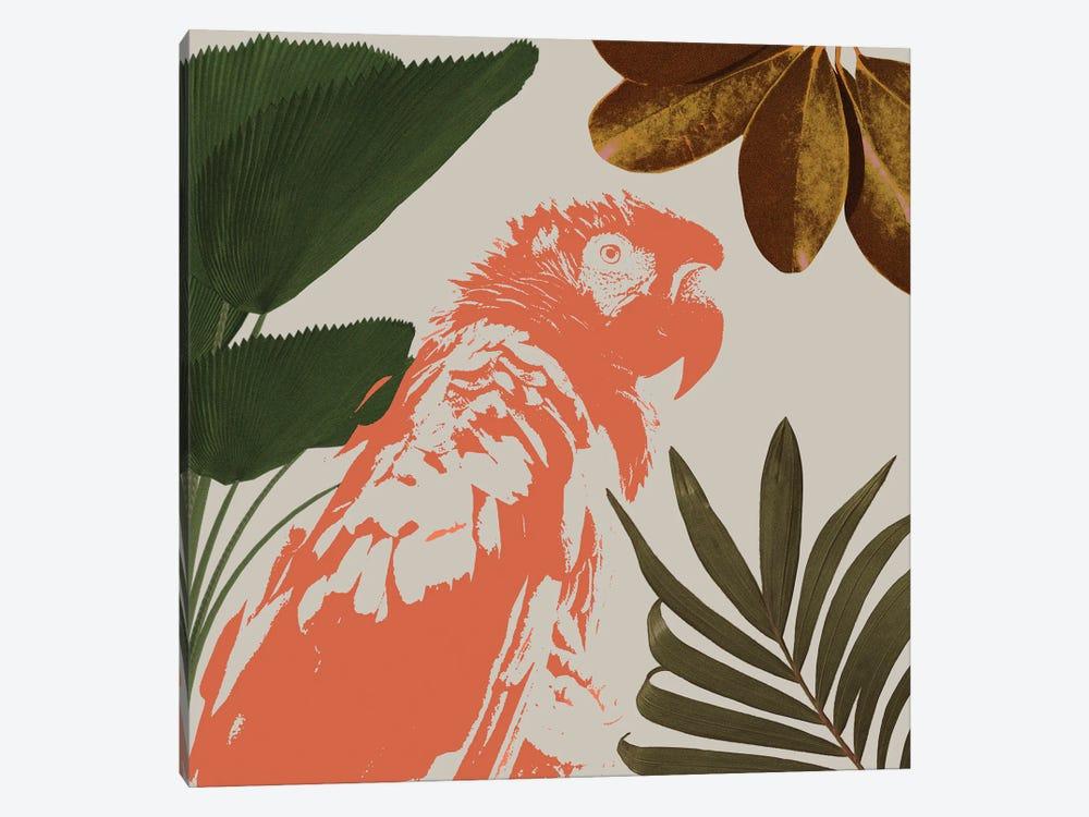 Graphic Tropical Bird I by Annie Warren 1-piece Canvas Art Print