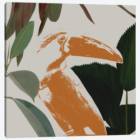 Graphic Tropical Bird III Canvas Print #AWR224} by Annie Warren Canvas Print