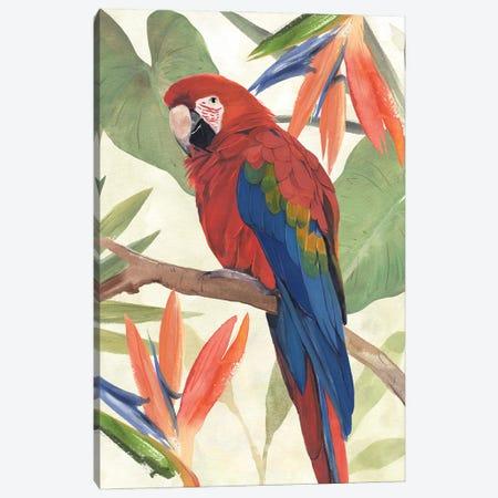 Tropical Parrot Composition II Canvas Print #AWR258} by Annie Warren Canvas Print