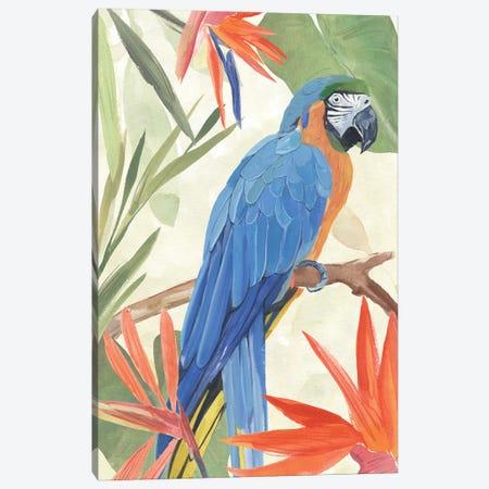 Tropical Parrot Composition IV Canvas Print #AWR259} by Annie Warren Art Print
