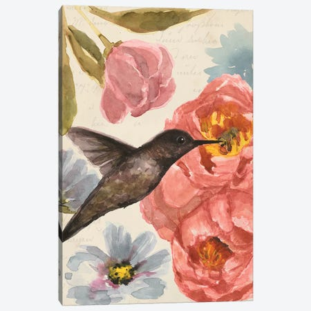 Nectar's Sip I Canvas Print #AWR25} by Annie Warren Canvas Artwork
