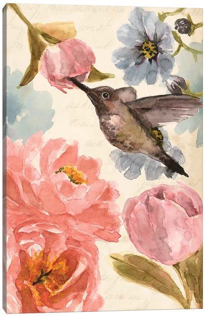 Nectar's Sip II Canvas Art Print