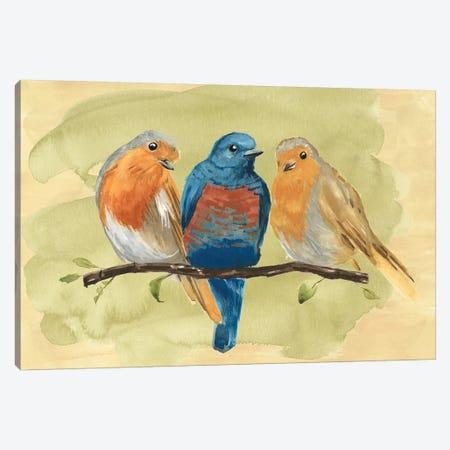 Bird Perch II Canvas Print #AWR2} by Annie Warren Canvas Wall Art
