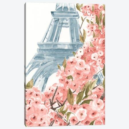 Paris Cherry Blossoms II Canvas Print #AWR30} by Annie Warren Canvas Wall Art