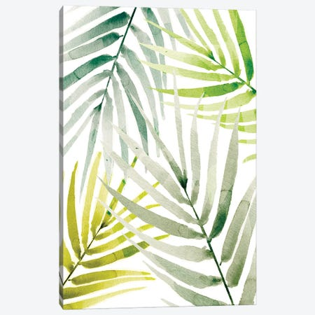 Shady Palm I Canvas Print #AWR33} by Annie Warren Canvas Art