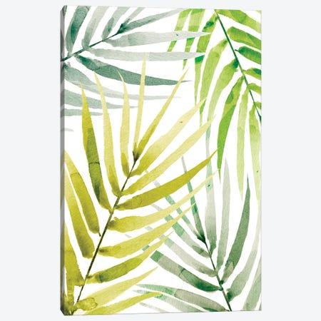 Shady Palm II Canvas Print #AWR34} by Annie Warren Art Print
