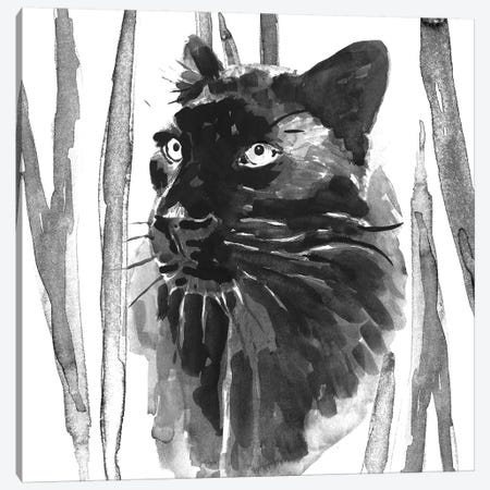 Still Cat I Canvas Print #AWR37} by Annie Warren Canvas Print