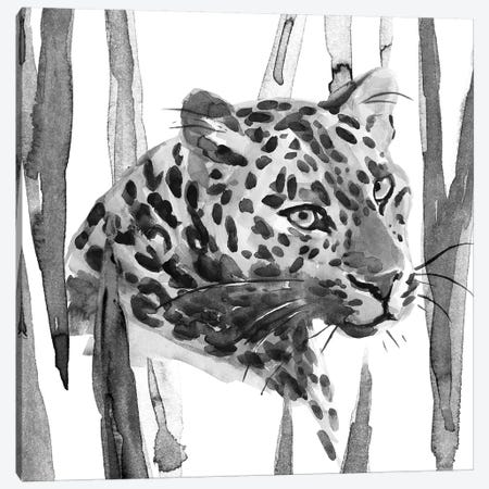 Still Cat II Canvas Print #AWR38} by Annie Warren Canvas Artwork
