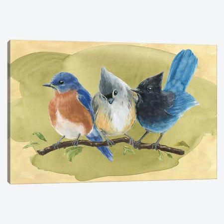 Bird Perch III Canvas Print #AWR3} by Annie Warren Canvas Artwork