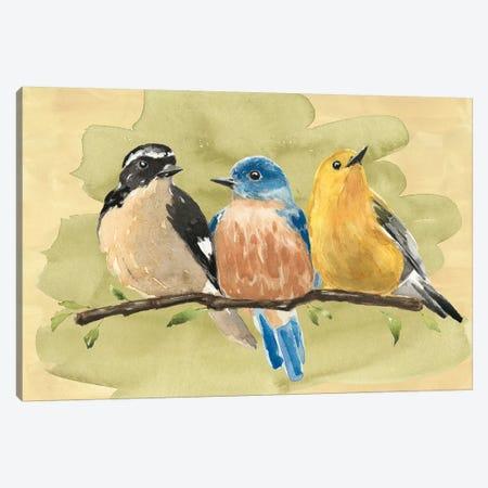 Bird Perch IV Canvas Print #AWR4} by Annie Warren Canvas Art Print