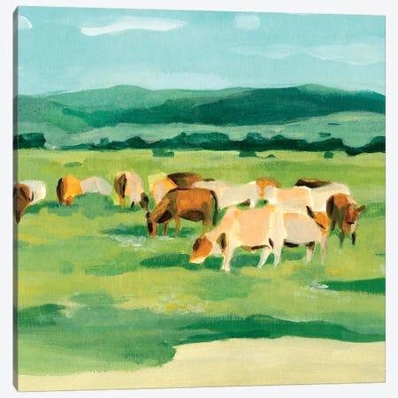 Rural Fields I Canvas Print #AWR76} by Annie Warren Canvas Art Print