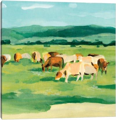 Rural Fields I Canvas Art Print