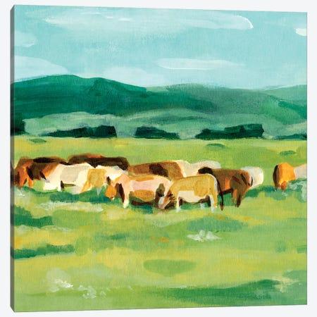 Rural Fields II Canvas Print #AWR77} by Annie Warren Canvas Art Print