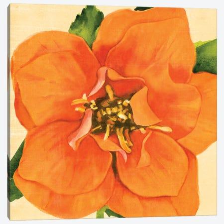 Copper Petals I Canvas Print #AWR87} by Annie Warren Canvas Art