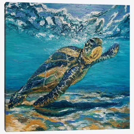 Turtle Surf Canvas Print #AWT24} by Amanda Wathen Canvas Artwork