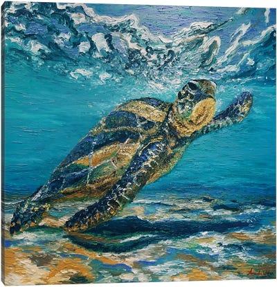 Turtle Surf Canvas Art Print