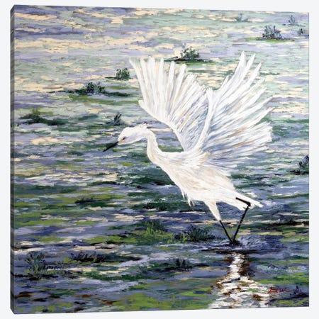 Island Egret Canvas Print #AWT5} by Amanda Wathen Art Print
