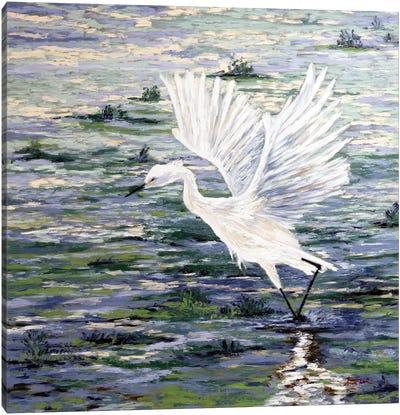 Island Egret Canvas Art Print