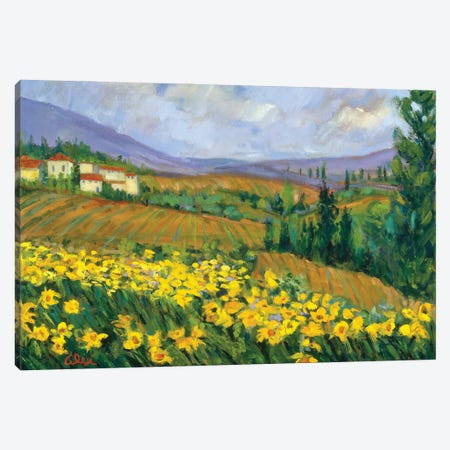 Field of Yellow Canvas Print #AXF10} by Alexi Fine Canvas Art