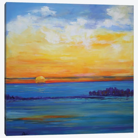 Independence Day Sunset Canvas Print #AXF16} by Alexi Fine Canvas Art Print