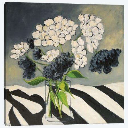 Noirs et Blancs Canvas Print #AXF22} by Alexi Fine Canvas Art Print