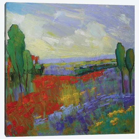 Poppy Field Valley Canvas Print #AXF25} by Alexi Fine Canvas Art