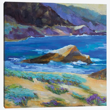 Carmel Cove Canvas Print #AXF4} by Alexi Fine Canvas Print