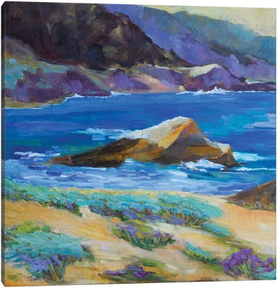 Carmel Cove Canvas Art Print