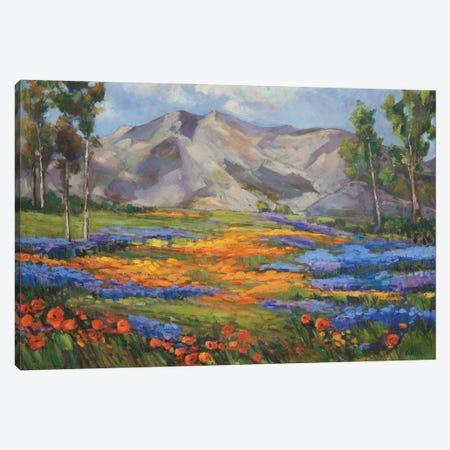 Carmel Spring Canvas Print #AXF5} by Alexi Fine Canvas Art Print