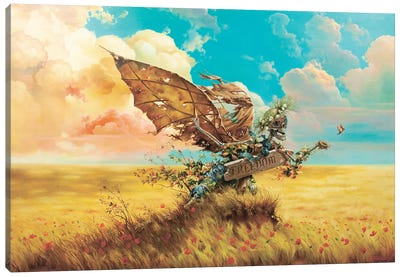 Freedom Canvas Art Print